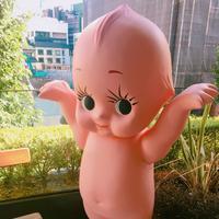 ロイヤル・ガーデンカフェ渋谷の写真・動画_image_263005