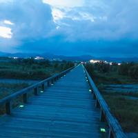 蓬莱橋の写真・動画_image_265157
