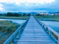 蓬莱橋の写真・動画_image_265158