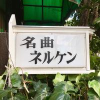 ネルケンの写真・動画_image_269520