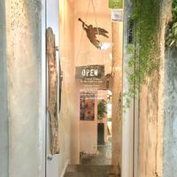 アインソフ ジャーニー 新宿店(AIN SOPH.JOURNEY)の写真・動画_image_270540