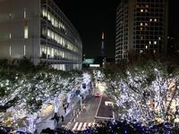 六本木けやき坂通りの写真・動画_image_279055