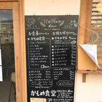かもめ食堂の写真・動画_image_282684