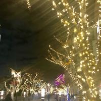 神戸ハーバーランドumieの写真・動画_image_283657
