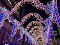 神戸ルミナリエの写真・動画_image_285671