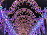 神戸ルミナリエの写真・動画_image_286457