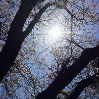 高知市の写真・動画_image_302400