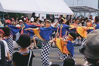 高知県の写真・動画_image_302402