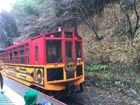 嵯峨野トロッコ列車の写真・動画_image_310459