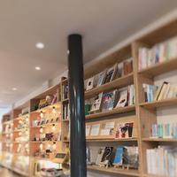 カフェ木と本の写真・動画_image_313893