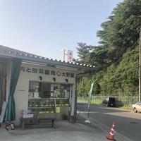 大野屋の写真・動画_image_317441