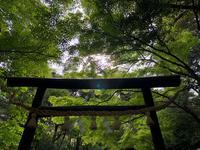野宮神社の写真・動画_image_318445