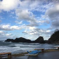 越前松島水族館の写真・動画_image_318755