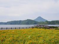 池田湖の写真・動画_image_320154