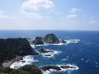 佐多岬の写真・動画_image_320173