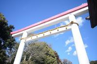 鎌倉宮の写真・動画_image_320467