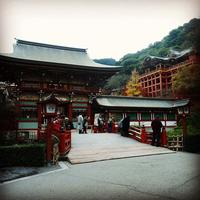 祐徳稲荷神社の写真・動画_image_320479