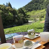 池川茶園 工房 Cafeの写真・動画_image_321906
