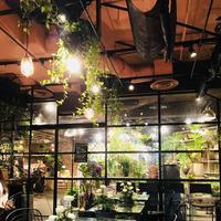 青山フラワーマーケット ティーハウス 南青山本店 (Aoyama Flower Market TEA HOUSE)の写真・動画_image_326146