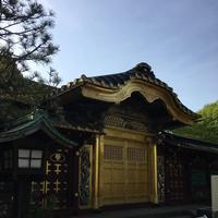 上野東照宮の写真・動画_image_329415