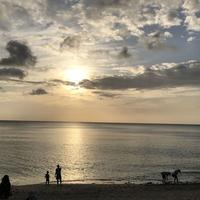 奄美市大浜海浜公園の写真・動画_image_329850