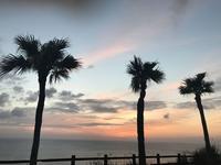 奄美市大浜海浜公園の写真・動画_image_329852