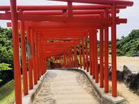 高山稲荷神社の写真・動画_image_333303