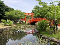 高山稲荷神社の写真・動画_image_333305