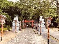 高山稲荷神社の写真・動画_image_333306