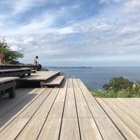 コエダハウス(COEDA HOUSE)の写真・動画_image_341147