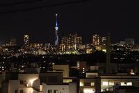 福岡タワーの写真・動画_image_344873