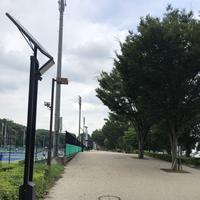 智光山公園(バス)の写真・動画_image_348032
