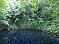 黄金崎不老ふ死温泉の写真・動画_image_348345
