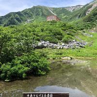 千畳敷カールの写真・動画_image_349402