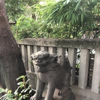 櫻田神社の写真・動画_image_407336
