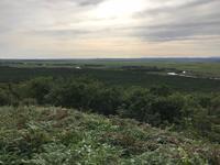 釧路湿原国立公園の写真・動画_image_421218