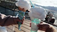 星野リゾートトマム 雲海テラスの写真・動画_image_453344