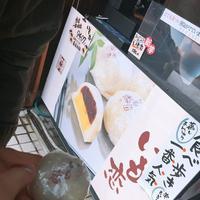 小江戸川越の写真・動画_image_458552