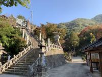 陶山神社の写真・動画_image_460098