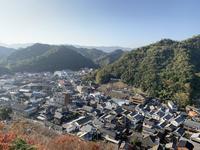 陶山神社の写真・動画_image_460099