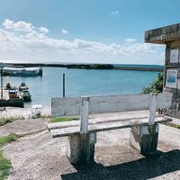 久高島の写真・動画_image_472820
