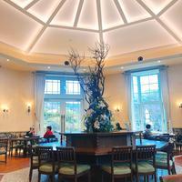 一色堂茶廊の写真・動画_image_498872