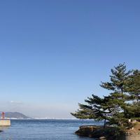 絵島の写真・動画_image_511245