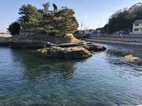 絵島の写真・動画_image_511247