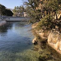 絵島の写真・動画_image_511248