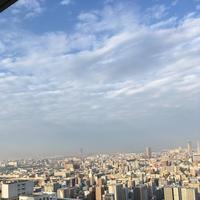 若草山の写真・動画_image_525929