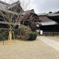 八坂神社の写真・動画_image_529512