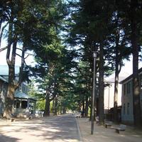 あがたの森公園の写真・動画_image_542475