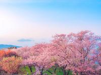 紫雲出山の写真・動画_image_544133