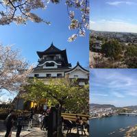 犬山城の写真・動画_image_549811